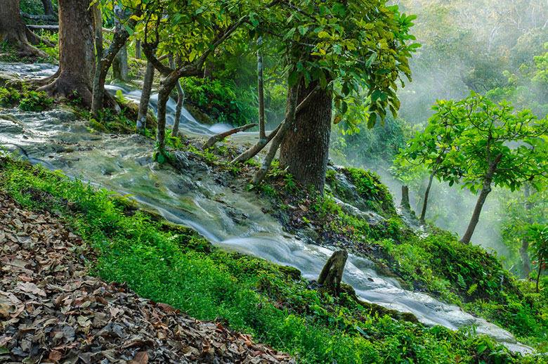 La cascade de Bua Thong (Nam Phu Chet Si)