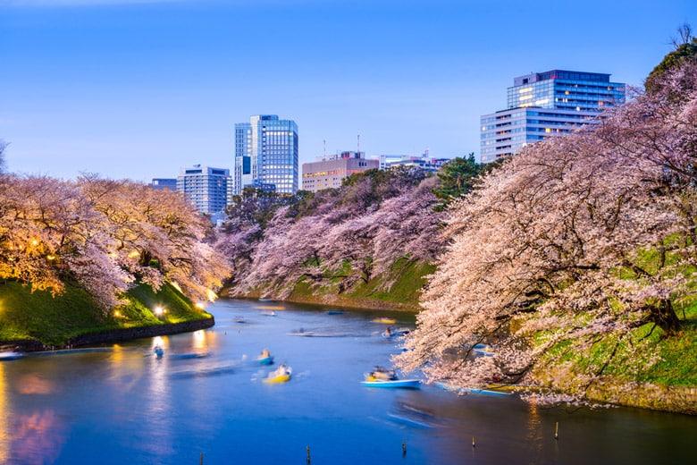 Chidorigafuchi á Tokyo