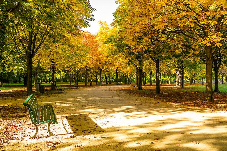 Le quartier de Tiergarten á Berlin