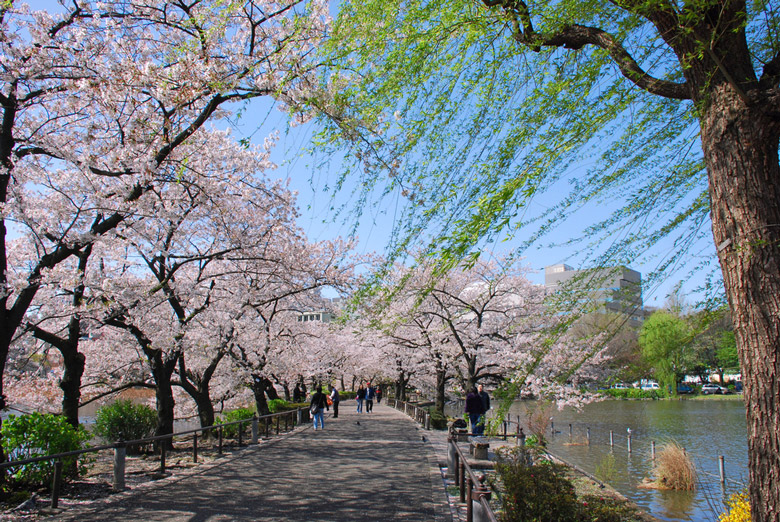 Parc d'Ueno á Tokyo
