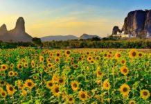 De Ayutthaya à Lopburi