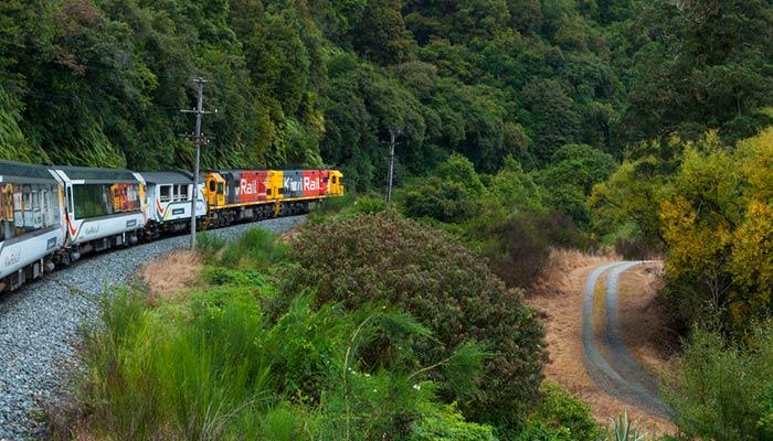 D'Auckland à Hamilton en train