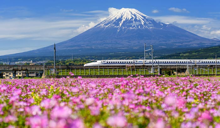 Vos options de voyage de Nagoya à Tokyo