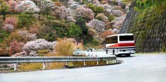 Voyager en bus au Japon