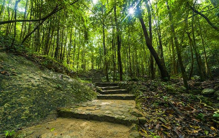 Randonnées à Koh Tao